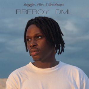 Fireboy DML\'s \'Laughter, Tears & Goosebumps\'