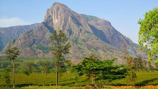 Where is Mount Mulanje?