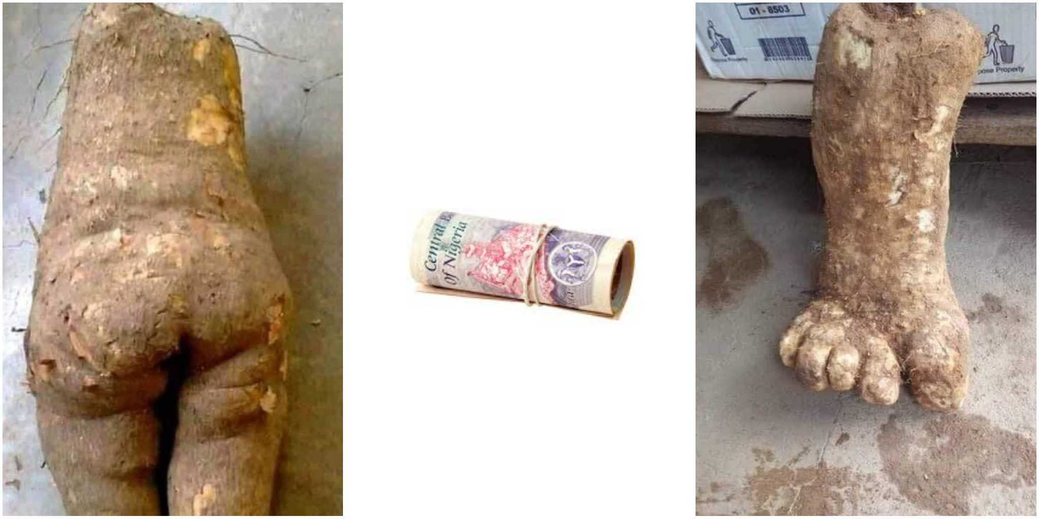 How To Pick Money From The Floor Without Turning To Yam | Zikoko!