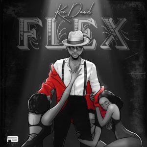 """""""Flex"""" by Kizz Daniel"""