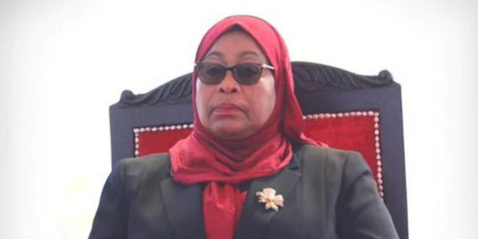 Samia Suluhu is the president of which country?