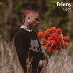 """""""Felony"""" - Ckay"""