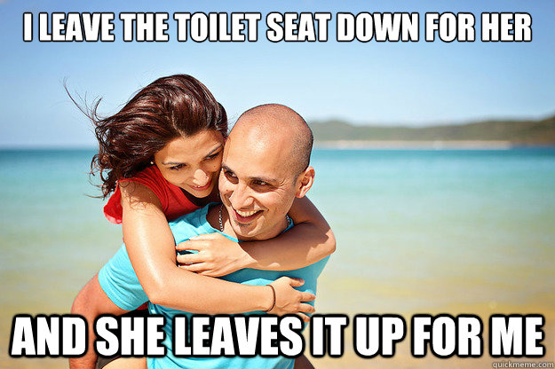 3. After using the restroom, you leave the toilet seat