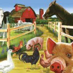 Livestock Farming