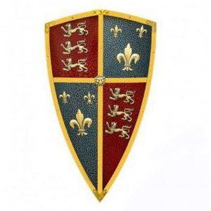 A shield